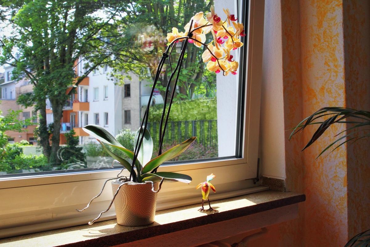 Eindrücke aus der Psychotherapeutische Praxis − Verhaltenstherapie Svenja Thielemann